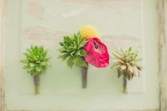 Ranunculus+ Succulent #Boutonniere I Birds of a Feather Events I #Groom