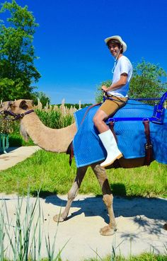 It's Wednesday! Riding a camel is just one way to wear Calzuro BAB Boots! Antistatic, resistant to animal fats and vegetable oils (anti-casein), and can be worn in shallow amounts of liquid these boots are made for any professional! Shop now at http://www.calzuro.com/product-p/bab-calzuro.htm
