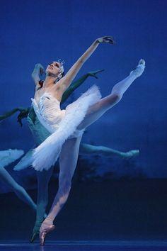 "Elena Vostrotina in ""Swan Lake"", Mariinsky Ballet Dance Like No One Is Watching, Dance With You, Lets Dance, Tutu, La Bayadere, Ballet Performances, Ballet Dancers, Ballerinas, Ballet Feet"