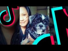 Reunited with Lexus (and TikTok) - YouTube 5 Months, Shih Tzu, Dance, Pets, Youtube, Animals, Dancing, Animales, Animaux