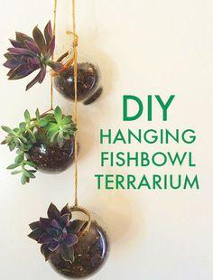 Make your own hanging fishbowl terrarium.