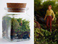 Twig DIY Terrarium Kits - Moss Terrarium