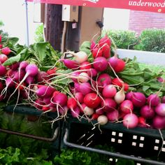 Radishes at Brentwood CA farmers market.
