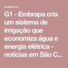 G1 - Embrapa cria um sistema de irrigação que economiza água e energia elétrica - notícias em São Carlos e Região