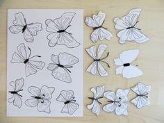 Párování motýlů (zalaminované obrysy motýlů, které se přidělávají pomocí samolepícího suchého zipu) Matching of butterflies