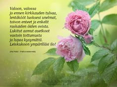 Finnish Words, Wise Words, Rose, Quotes, Flowers, Plants, Reading, Books, Quotations