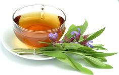 29 Top Health Benefits of Sage Tea or known as salvia officinalis is a plant which is beneficial to treat depression, fever, cold and more serious diseases. Holistic Remedies, Natural Home Remedies, Herbal Remedies, Health Remedies, Natural Healing, Sage Benefits, Tea Benefits, Health Benefits, Dry Up Breastmilk