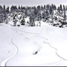 Ash C. Brighton UT Snowboarding, Skiing, Brighton, Ash, Bucket, Spaces, Photography, Outdoor, Snow Board