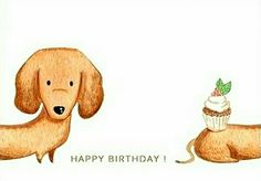 36 ideas happy birthday funny animals for 2020 Happy Birthday Dog, Happy Birthday Images, Happy Birthday Greetings, Birthday Love, Funny Birthday Cards, Dog Birthday Quotes, Happy Birthday Illustration, Dachshund Art, Happy B Day