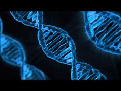 528hz Binaural Beat Transformation and Miracles (DNA) (1HR) (HQ) - YouTube