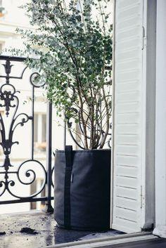 Comment aménager un balcon classique parisien, le décorer, le fleurir dans un style moderne et contemporain avec les pots, jardinières bacsac