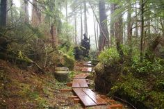 If you are looking for adventure and you're down for one the most breathtaking hikes on the Oregon Coast, you'll certainly want to head to the Tillamook Head Trail. One ... Read More