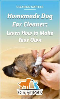 900 Ideas De 3 De Animales Animales Mascotas Recetas De Comida Para Perros