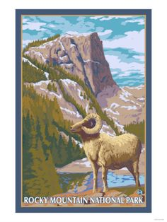 Colorado vintage postcards for tables (instead of numbered tables)