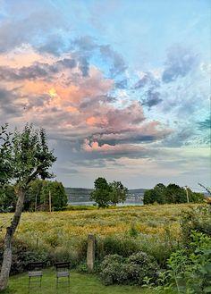 Vineyard, Clouds, Outdoor, Outdoors, Vine Yard, Vineyard Vines, Outdoor Games, The Great Outdoors, Cloud