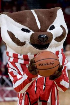 University of Wisconsin Basketball
