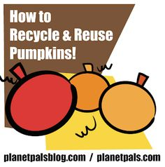 Halloween and Thanksgiving are over, what are the best ideas on Earth for recycling pumpkins? Reuse, Upcycle, Garden Compost, Healthy Pumpkin, Saving Ideas, Recycled Materials, Recycling, Mom, Halloween