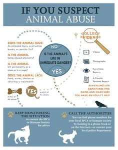 If you suspect animal abuse . . .