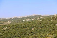 Village above Habil