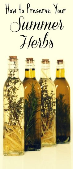 Herbs:  How to Preserve Your Summer #Herbs.