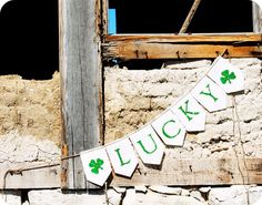 lucky clover bunting $17.99
