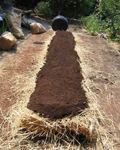 A few weeks ago we blogged an article in the LA Times about No-Dig Gardens. They require less water than traditional gardens and they're an easy way to start a raised bed. You can even start one right over a patch of grass you want to get rid of. Our friend and coworker, Hulda Nelson, tipped us off to the article. Then, last week she started her own no-dig garden and helped us out with some step by step directions.