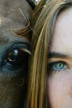 Funny pictures about Selfie With A Horse. Oh, and cool pics about Selfie With A Horse. Also, Selfie With A Horse photos. Cute Horses, Pretty Horses, Horse Love, Beautiful Horses, Horse Senior Pictures, Pictures With Horses, Horse Photos, Senior Pics, Horse Girl Photography