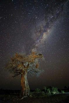 Sternenhimmel/Milchstraße über Namibia