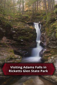 Visiting Adams Falls in Pennsylvania's Ricketts Glen State Park - http://uncoveringpa.com/adams-falls-in-ricketts-glen-state-park