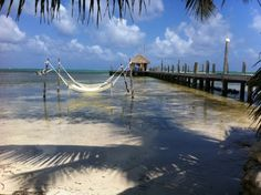My guide to Belize:Tours, scuba, travel, restaurants, hotels, bars & nightlife and my daily expat blog of my life in San Pedro and my travels around Belize.