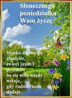 Herbs, Polish, Good Morning, Pictures, Herb, Medicinal Plants