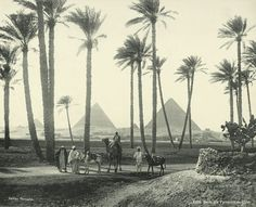 old vintage photos of egypt 1870-1875   I would love to see the Pyramids...