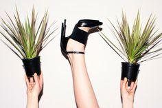 #ShoeCult rages on (via Cara Stricker)