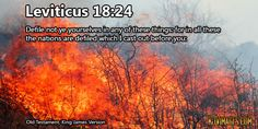 Leviticus 18:24