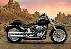 One of the best brands in the world to ogle at, to love and to just ride away to glory - Harley Davidson is the world leader when it comes to cruisers and heavy bikes.