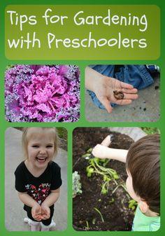 Capri + 3: How does our garden grow?-Tips for Gardening with Preschoolers #playfulpreschool