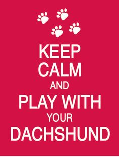 Keep Calm and Play With Your Dachshund any by PostersPersonalized, $17.00