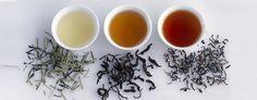 5 types of tea that melt fat away (Corbis)