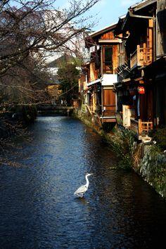 Kyoto, Japan :: Rachael White Photos Etsy Shop