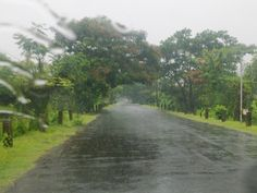 Kerala enjoys unique geographical features that have made it one of the most sought after tourist destinations in Asia. An equable climate. A long shoreline with serene beaches,Tranquil stretches of emerald backwaters,Lush hill stations and exotic wildlife. http://godwinholidays.com/