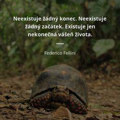Neexistuje žádný konec. Neexistuje žádný začátek. Existuje jen nekonečná vášeň života. - Federico Fellini #vášeň #život Motto, Wisdom, Humor, Motivation, Words, Quotes, Tattoos, Famous People Quotes, Interesting Quotes