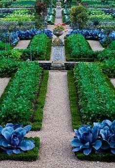 Ornamental cabbages in the potager at chateau de villandry, france Potager Garden, Edible Garden, Vegetable Garden, Formal Gardens, Outdoor Gardens, Indoor Outdoor, Beautiful Landscapes, Beautiful Gardens, Château De Villandry