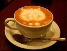 10 keer kattenkunstjes in je koffie