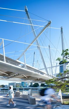 Kurilpa Bridge / Cox Rayner Architects with Arup