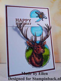 STAMPINBACK.NL: rubber stamps Happy Birthday