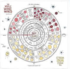 Wine Wheel from The Essential Scratch & Sniff Guide to Becoming a Wine Expert / wendymacnaughton.com