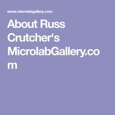 About Russ Crutcher's MicrolabGallery.com