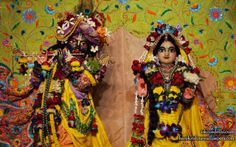 To view Radha Parthasarathi Close Up Wallpaper of ISKCON Dellhi in difference sizes visit - http://harekrishnawallpapers.com/sri-sri-radha-parthasarathi-close-up-iskcon-delhi-wallpaper-008/