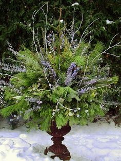 Winter pot 2 by Chalets Specialty Garden Care staff. Several winter pots for inspiration. Love this blue arrangement.