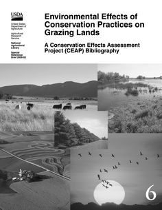 Conservation Grazing infographics   Environmental Effects of Conservation Practices on Grazing Lands